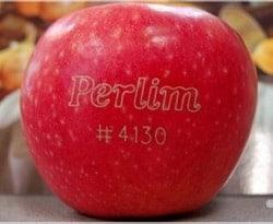 яблоко с гравировкой
